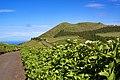 Açores 2010-07-19 (5046152909).jpg
