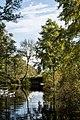A Lake Near Ross Castle (94981403).jpeg