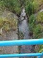A Svandabereg-patak gyalogoshídról nézve, 2018 Oroszlány.jpg