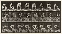 A brick-layer. Photogravure after Eadweard Muybridge, 1887. Wellcome V0048692.jpg