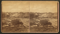A log jam, from Robert N. Dennis collection of stereoscopic views.png