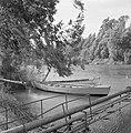 Aan de begroeide oever van de rivier de Jordaan bij het Meer van Tiberias met tw, Bestanddeelnr 255-4134.jpg