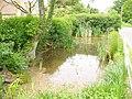 Abinger Pond - geograph.org.uk - 817517.jpg