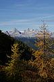 Abstieg kammspitze zur kammalm 40792 2012-10-05.JPG