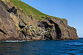 Acantilados de Heimaey, Islas Vestman, Suðurland, Islandia, 2014-08-17, DD 028.JPG