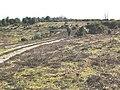 Acres Down - geograph.org.uk - 368200.jpg