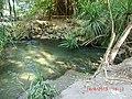 Adel's Grove - panoramio (4).jpg
