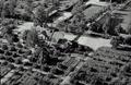 Ala-Lemun kartano 1950- luvulla.png