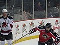 Albany Devils vs. Portland Pirates - December 28, 2013 (11622081035).jpg
