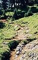 Altos Pirineos 1981 15.jpg