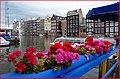 Amsterdam Centraal - panoramio (10).jpg