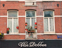 Amsterdam windows.png