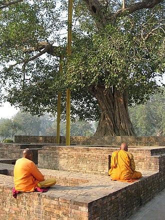 Pratyahara - Monks meditating under the Anandabodhi tree in Jetavana Monastery, Sravasti