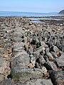 Ancient Fishing Weir - geograph.org.uk - 637068.jpg