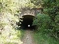 Antigo túnel da Estrada de Ferro Sorocabana - EFS (Itu-Mairinque) próximo à Estação Moreiras em Mairinque - panoramio (2).jpg