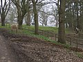 Approaching Moundsmere Manor Farm - geograph.org.uk - 381302.jpg