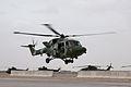 Army Lynx Mk9A MOD 45151417.jpg