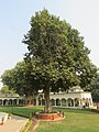 Around and near Anand Bhavan, Swaraj Bhavan, Allahabad, IRCTC 2017 (51).jpg