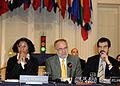 Audiencia a sociedad civil sobre fortalecimiento del Sistema Interamericano de Derechos Humanos (8143951924).jpg