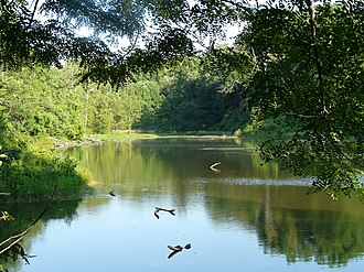 John James Audubon State Park - Wilderness Lake at Audubon State Park.