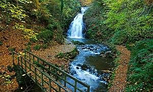 English: Autumn at Glenoe (1) The flow, on the...