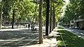 Avinguda Diagonal 2014 07 12 Barcelona, Spain.jpg