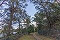 Avon NSW 2574, Australia - panoramio (32).jpg