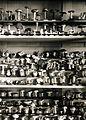 Az Érseki Főgimnázium gomba gyűjteménye. Fortepan 100218.jpg