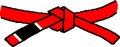 BJJ Red Belt.PNG