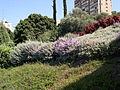 Baha'i Gardens (2896746906).jpg