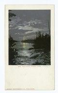 Bala Falls, Lake Rousseau, Muskoka Lakes, Ont (NYPL b12647398-66873).tiff