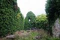 Ballymote Friary Nave 2010 09 23.jpg
