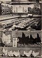 Baltimore and Ohio employees magazine (1920) (14761614412).jpg