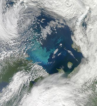 Barents Sea - Phytoplankton bloom in the Barents Sea. The milky-blue colour that dominates the bloom suggests that it contains large numbers of coccolithophores.