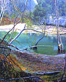 Barton Creek (Pixelated)-detail.jpg