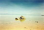 180px-Battle_Tarawa_Tank