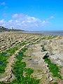 Beach near Holywell - geograph.org.uk - 905717.jpg
