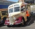 Bedford OB (1947) Lewis Coaches Henstridge (36559633795).jpg
