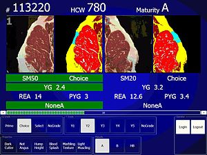 Food grading - A screenshot from the electronic grading system showing USDA Choice, Yield Grade 2 beef. The left is the natural color view of the cut; the right is the instrument enhanced view that details the amount of marbling, size, and fat thickness.