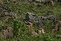 Beejamandal Temple, ASI Excavation Site 16.jpg