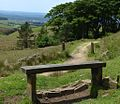 Bench at Drinkwaters Farm.jpg