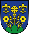 Berg SG Wappen.png