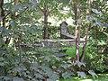 Beth Haim Portugees-Israëlietische Begraafplaats (1112464506).jpg
