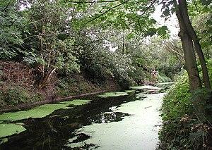 Newland, Kingston upon Hull - Beverley and Barmston Drain near crossing of Beverley Road (2008)