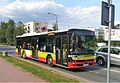 Biala Podlaska bus (2).jpg
