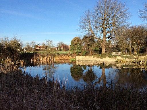 Biddenham Village Pond