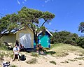 Blairgowrie beach at Port Phillip Bay, Victoria 05.jpg