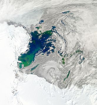 Ross Sea - Bloom in the Ross Sea, January 2011