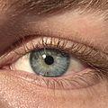 Blue-Green Eye.jpg