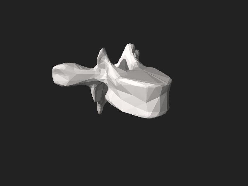 File:BodyParts3D FJ3171 Sixth thoracic vertebra.stl